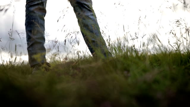 the girl is walking on the grass - steps stock videos & royalty-free footage