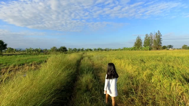 The girl walks in the morning field.