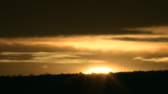 the glowing sun rises in the distance. - glowing stock videos & royalty-free footage