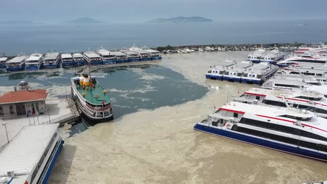 vídeos de stock e filmes b-roll de the government will take action for the sea snot problem on the coast of turkey's sea of marmara that has been observed for a while, said the turkish... - encontrar