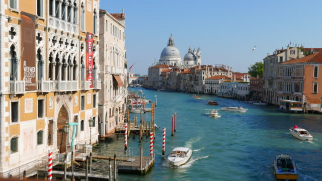 the grand canal in venice italy - venice italy stock videos and b-roll footage