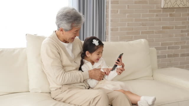 the grandfather and granddaughter use a smartphone sitting on the couch - アクティブシニア点の映像素材/bロール