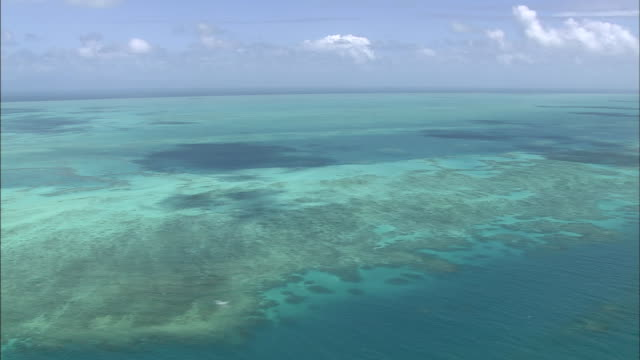 the great barrier reef stretches out for miles across the pacific ocean. - pacific ocean stock-videos und b-roll-filmmaterial