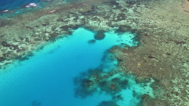 aerial: the great barrier reef - reef stock videos & royalty-free footage