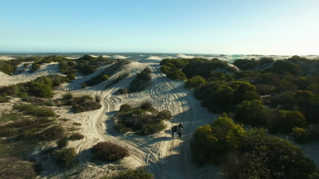 den fantastiska sandstranden trek - namibian desert bildbanksvideor och videomaterial från bakom kulisserna