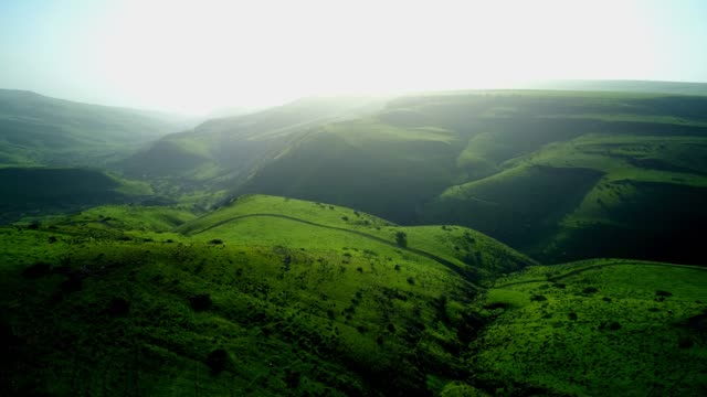 the green galilee landscapes in the winter - eyal bartov stock videos and b-roll footage