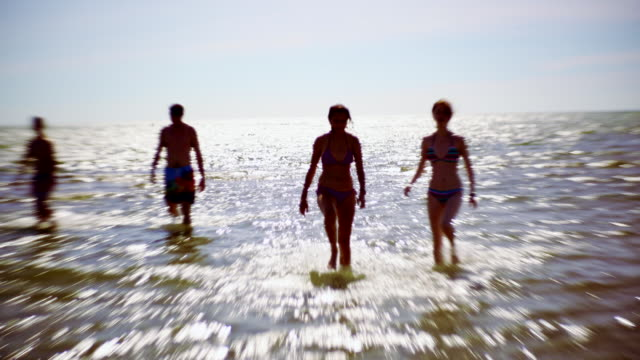 the group of young friends swimming and playing at the signing sands beach at the lake huron, ontario, canada. signing sands beach. - ontario canada stock videos and b-roll footage