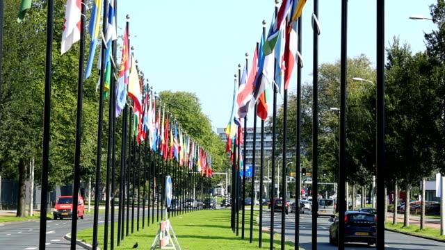 The Haag