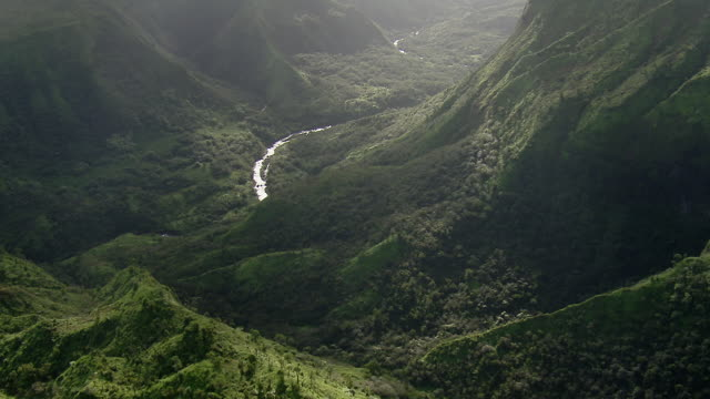 vídeos de stock e filmes b-roll de the hanalei river winds through a lush valley covered with tropical rain forest on the island of kauai. - kauai