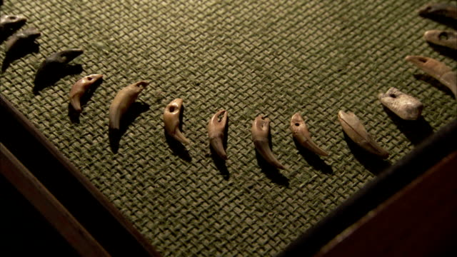 the hand-carved stone pieces of a necklace are displayed on a mat in a display case. available in hd - skåp med glasdörrar bildbanksvideor och videomaterial från bakom kulisserna