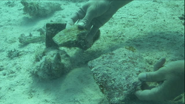 the hands of an archaeologist pick up pieces of an artifact at the bottom of the red sea. - underwater stock videos & royalty-free footage