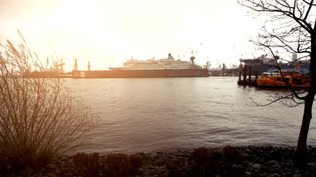 stockvideo's en b-roll-footage met the harbor of hamburg and elbe river - kleurtoon