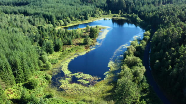 the high angle aerial view of a small scottish loch in an area of forest in dumfries and galloway, south west scotland - zoom out stock videos & royalty-free footage