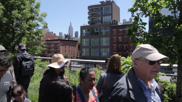 The High Line, Chelsea, Manhattan, New York City, New York, USA, North America