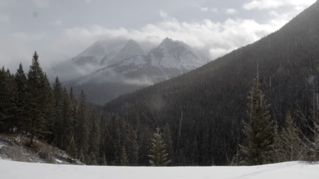the hills and snowy mountains in the distance / banff, canada - schneien stock-videos und b-roll-filmmaterial