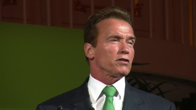 the hollywood icon and former governor of california arnold schwarzenegger has returned to his native austria to appeal for action on climate change.... - arnold schwarzenegger stock-videos und b-roll-filmmaterial