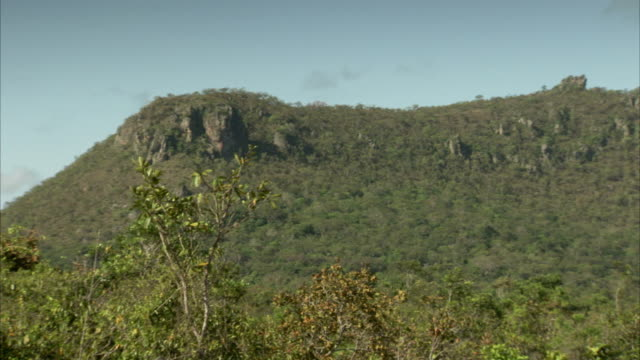 the horizon curves softly around grassy hills at pedra pintada cave in brazil. available in hd. - roraima state stock videos and b-roll footage