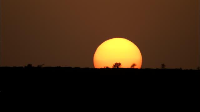 the horizon eclipses the setting sun. - モーリタニア点の映像素材/bロール