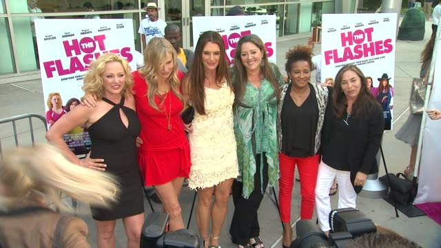 clean the hot flashes los angeles premiere hollywood ca united states 6/27/2013 - wanda sykes stock videos and b-roll footage