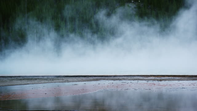 the hot water of grand prismatic spring steams near a forest in yellowstone national park in wyoming - yellowstone national park stock videos & royalty-free footage
