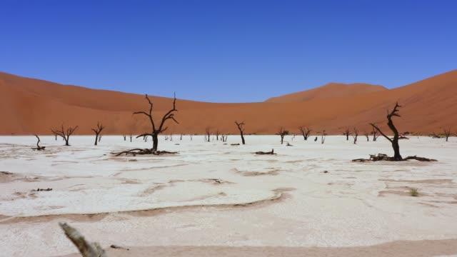 vidéos et rushes de les étés les plus chauds - paysage afrique