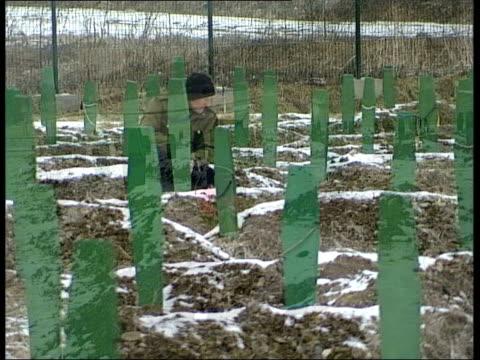 the hunt for general radko mladic bosnia herzegovina srebrenica general view mass grave site pan mid shot flowers at one grave long mid shot man... - ratko mladic stock videos & royalty-free footage