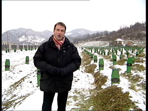 the hunt for general radko mladic srebrenica neely to camera gv mass grave site pull out close mid shot headstone on grave - ratko mladic stock videos & royalty-free footage