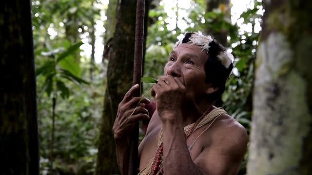 vídeos y material grabado en eventos de stock de the indigenous waorani people who are scattered across the vast pastaza province in eastern ecuador believe their land is the front line in a battle... - ecuador
