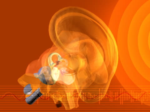 the inner ear - human ear stock videos & royalty-free footage