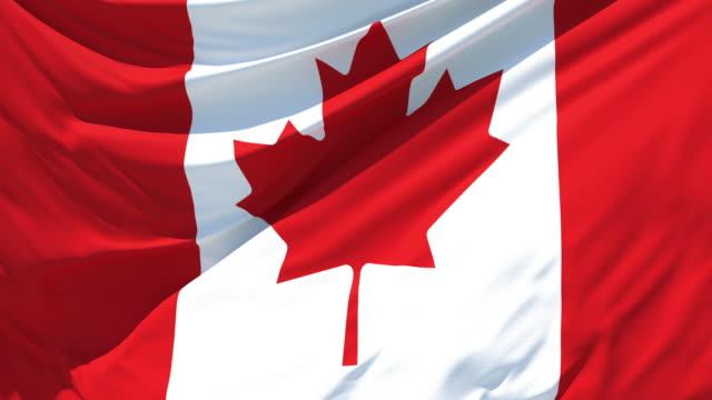 vídeos de stock e filmes b-roll de the italian flag fluttering in the wind - bandeira do canadá