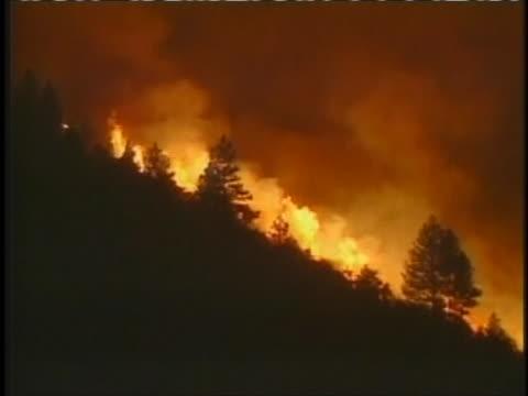 vídeos y material grabado en eventos de stock de the july 15th, 2004 today show covers a wildfire. - programa de televisión