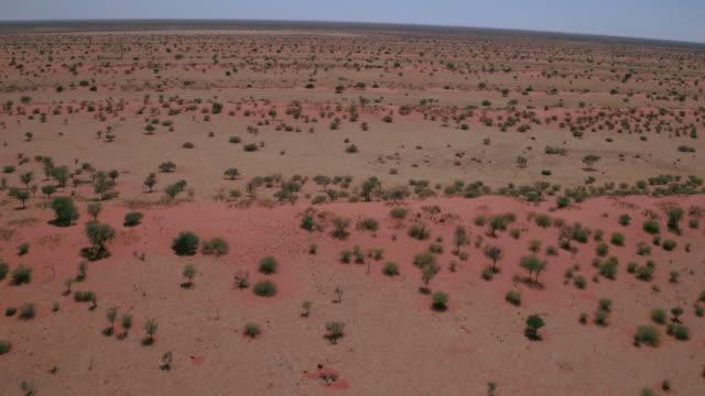 vídeos de stock, filmes e b-roll de o deserto de kalahari - deserto de kalahari