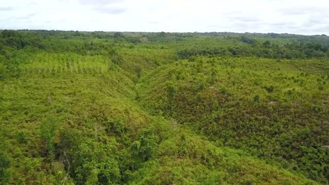The Kersik Luway National Park, Melak Borneo.