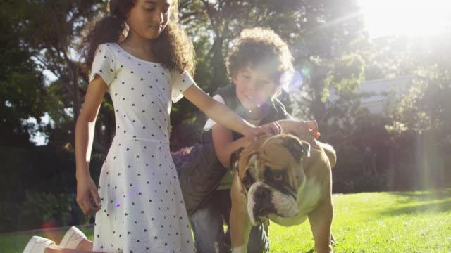 vídeos de stock e filmes b-roll de the kids of the family - cachorrinho