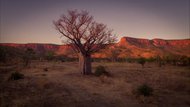stockvideo's en b-roll-footage met the kimberley, australia - wildernis