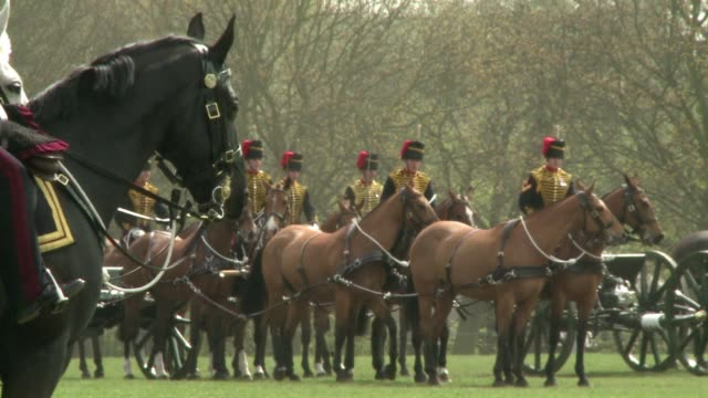 the kings troop royal horse artillery a ceremonial unit of the british army annual inspection was conducted by major general george norton wednesday... - royal horse artillery stock videos and b-roll footage