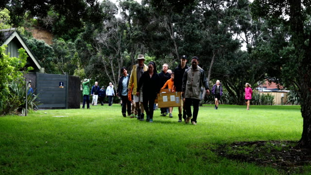 the kiwi arrive with a traditional maori 'powhiri' at shakespear open sanctuary on april 29, 2017 in auckland, new zealand. the 20 single little... - new zealand culture stock videos & royalty-free footage