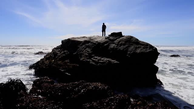 the lafkenches continue the ancestral tradition of working on the cliffs of the pacific coast to collect kelp and shellfish from rocks in southern... - kelp stock videos & royalty-free footage