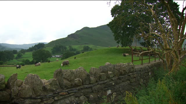the lake district has joined the taj mahal and the grand canyon as a unesco world heritage sitethe national park is the first in the uk to be given... - national park stock videos & royalty-free footage