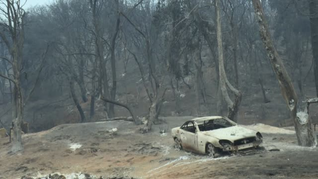 the 'lake fire' has burnt down houses and destroyed cars in angeles national forest, but the fast-moving brush fire is now slowing after light rain - übersichtsreport stock-videos und b-roll-filmmaterial