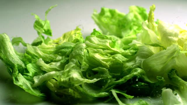 stockvideo's en b-roll-footage met the lettuce leaves are falling, slow motion - sla