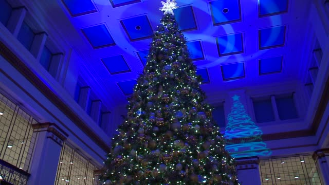 WGN The lighting of the 108th State Street Macy's Christmas Tree in the Walnut Room in Chicago on November 7 2015