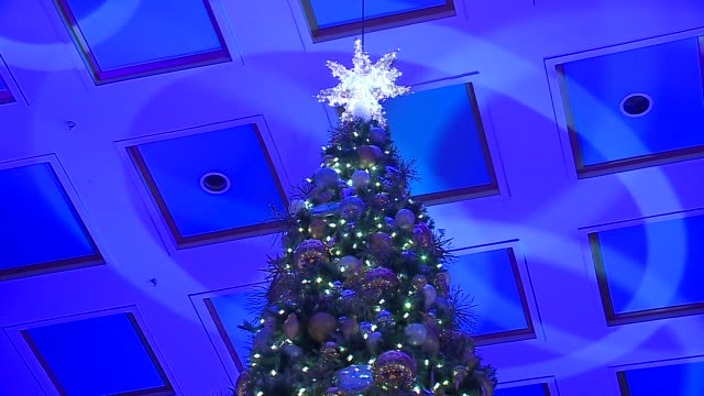 wgn the lighting of the 108th state street macy's christmas tree in the walnut room in chicago on november 7 2015 - クリスマスツリー点灯式点の映像素材/bロール