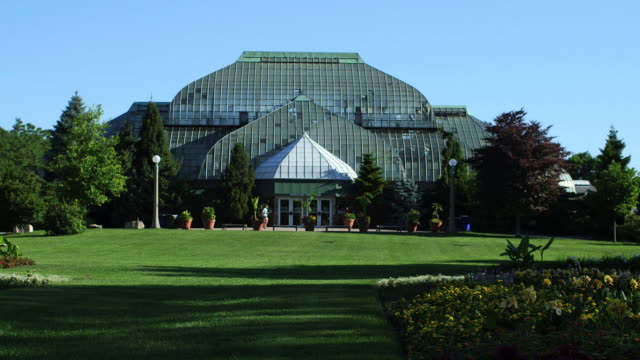 the lincoln park conservatory - botanical garden stock videos & royalty-free footage