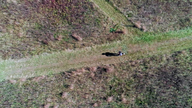 The little, 7-years-old, boy running on the path in the fields. Aerial drone video.
