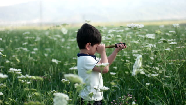 the little boy young researcher looks up and exploring with binoculars - binoculars stock videos & royalty-free footage