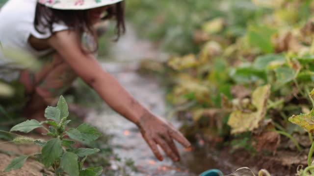 小さな女の子は泥水で遊ぶ - ヨゴレ点の映像素材/bロール