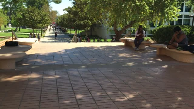 the los angeles police department is investigating an attempted kidnapping near cal state nothridge. interviews with students on campus and b-roll of... - northridge stock videos & royalty-free footage