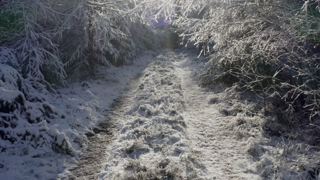 the low angle view of a track covered in snow in dumfries and galloway south west scotland - snowing stock videos & royalty-free footage