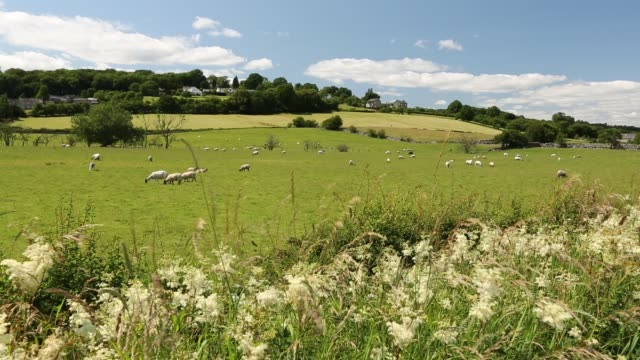 The Lyth Valley in South Cumbria, UK.